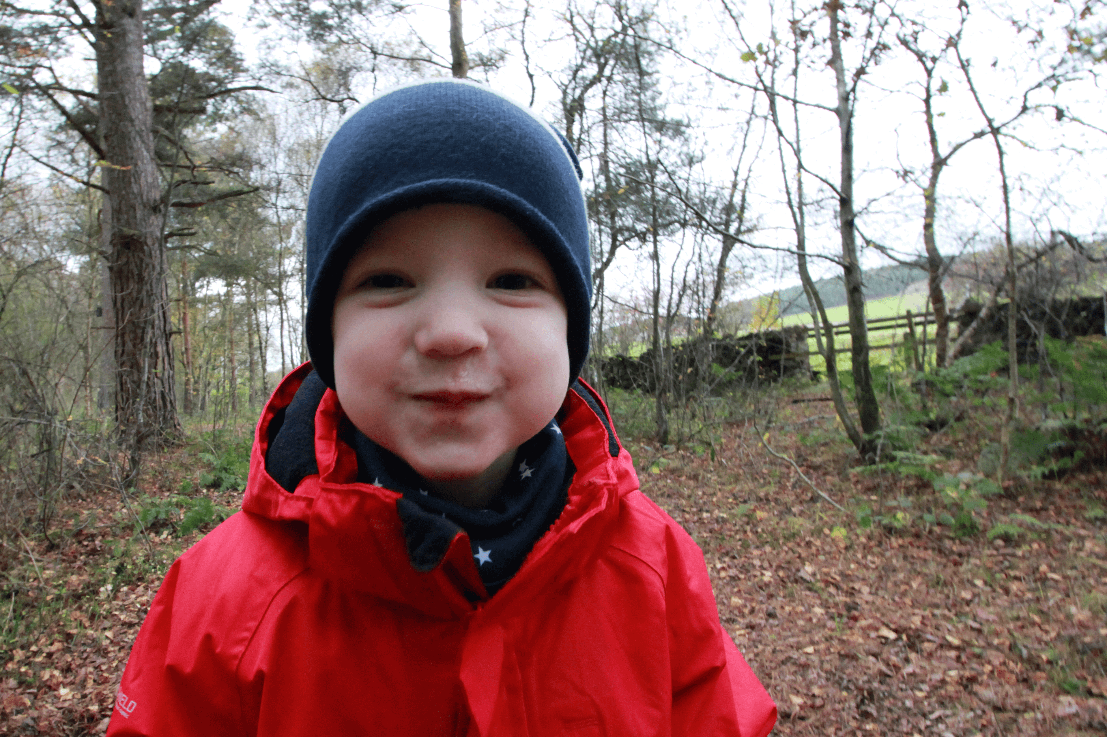 Gabey having fun in the woods in the Lake District