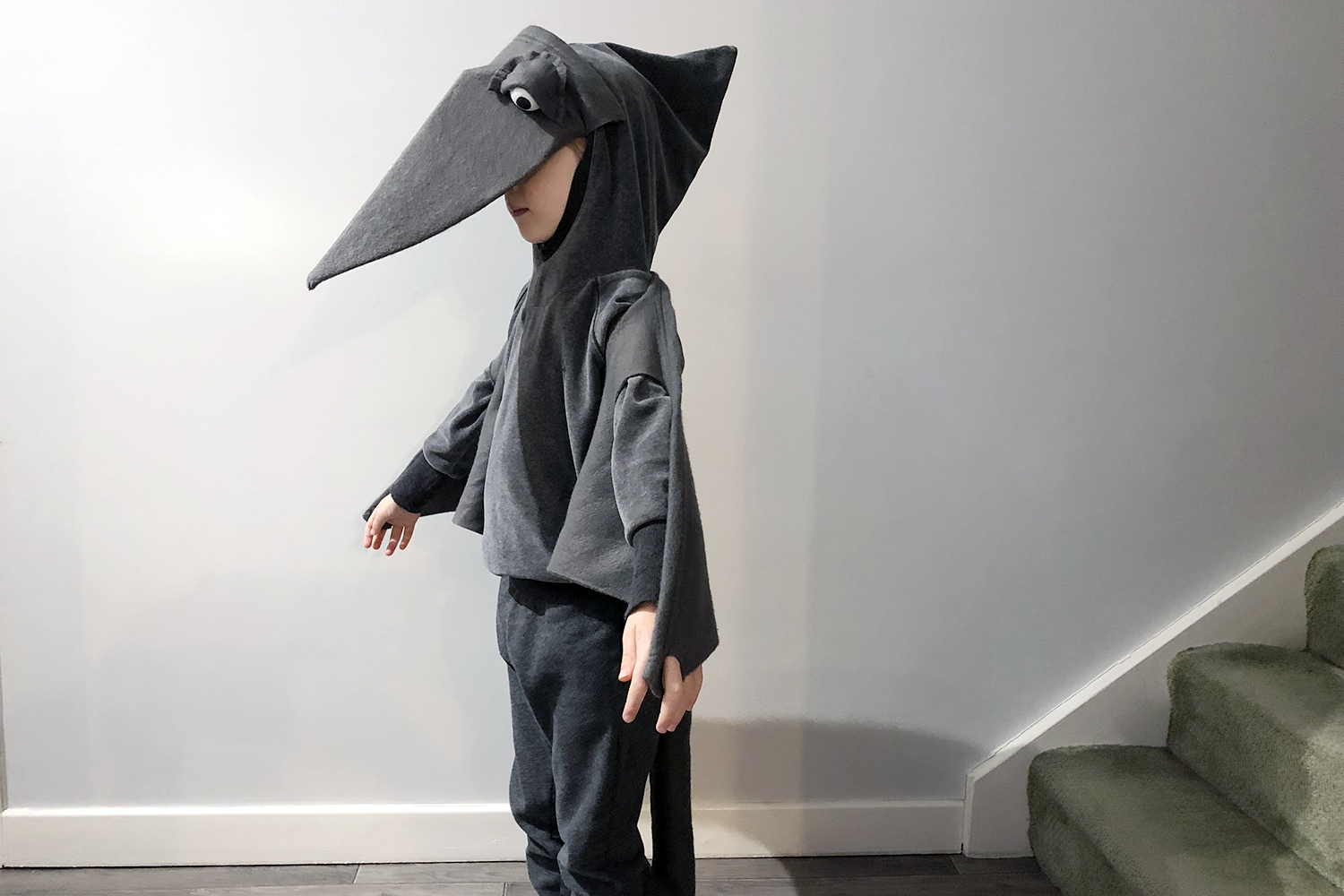 Toby's World Book Day pteranodon costume