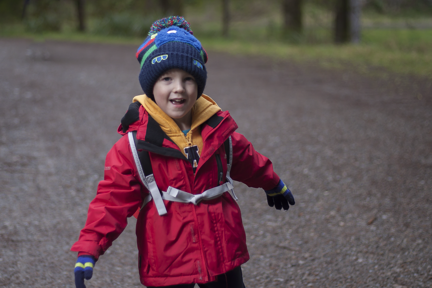 Gabe enjoying a walk in Whinlatter Forest