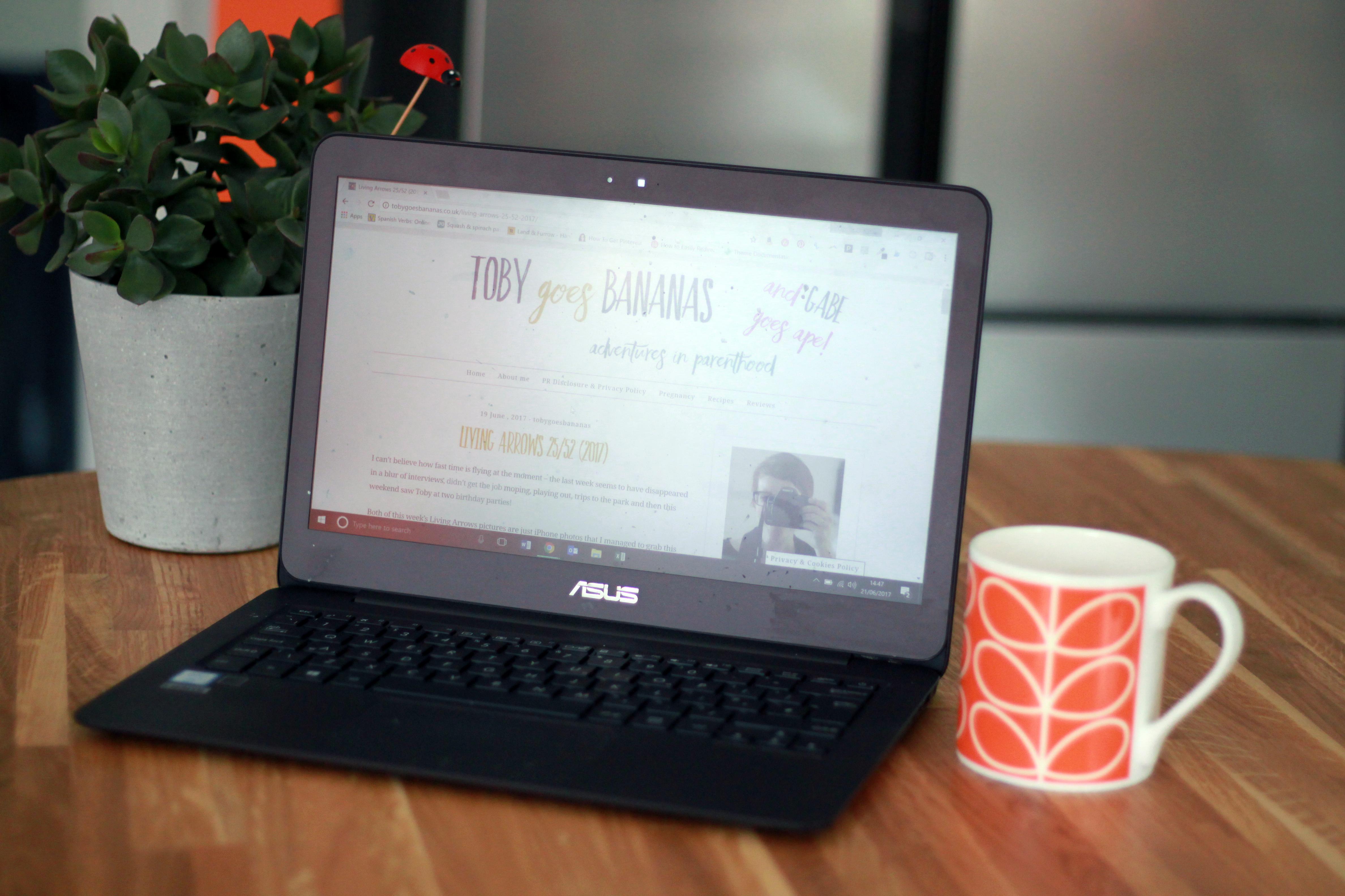 A laptop, a mug and a plant