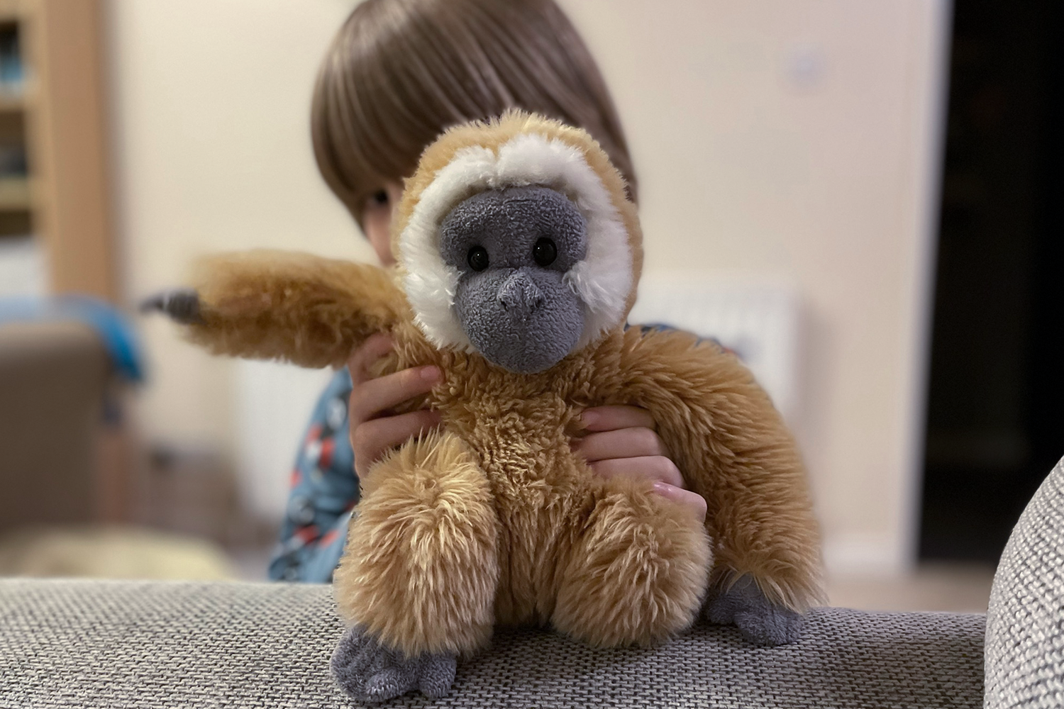 Toby hiding behind a cuddly toy gibbon